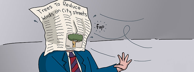 Trees to Reduce Winds on City Streets